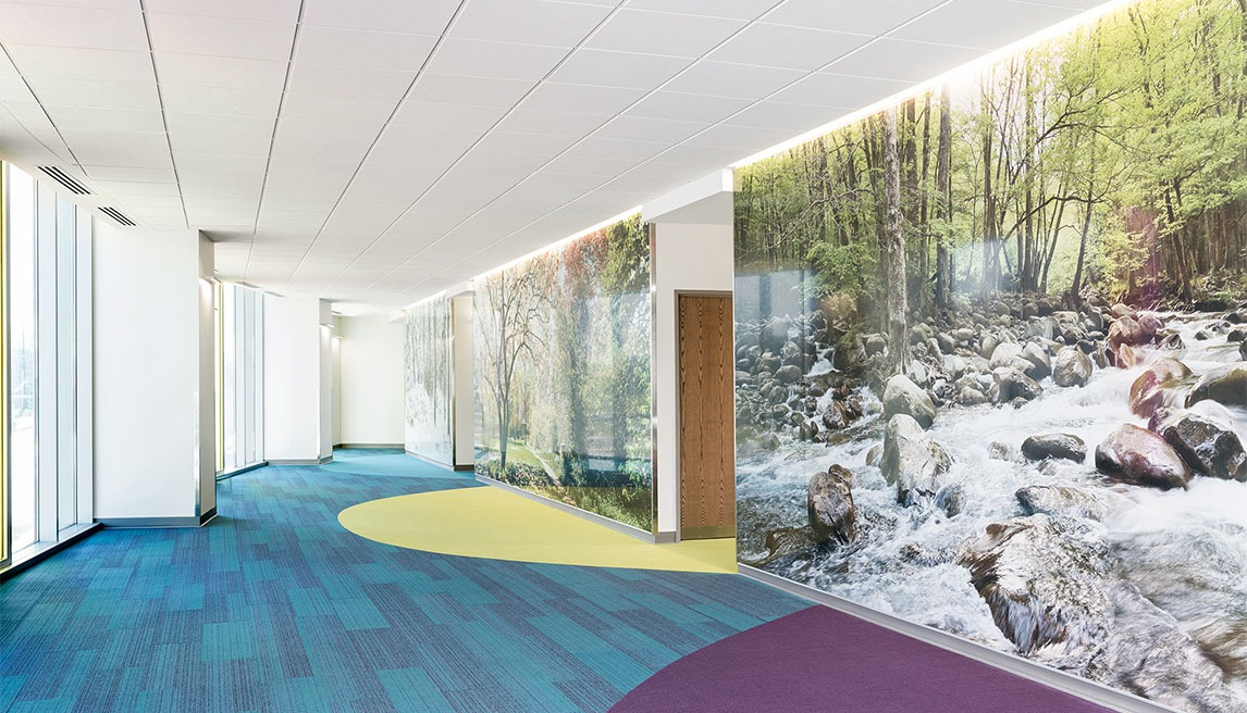Angled view of murals on decorative wall cladding that display elements of the Kentucky landscape situated in corridors in the Lexington Shriners Hospital for Children